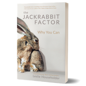 Book: Jackrabbit Factor Paperback